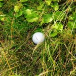 Golfball im Rough