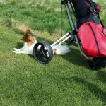 Chico Golfplatz Gera Burkersdorf